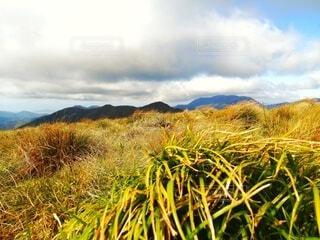 自然,風景,空,秋,屋外,緑,白,雲,青,葉,山,景色,登山,草,新緑,草木,山腹