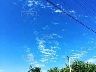 自然,空,雲,青い空,標識,樹木,夏空