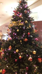クリスマスツリーの写真・画像素材[919248]