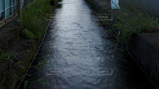 夏の水路の写真・画像素材[4662475]