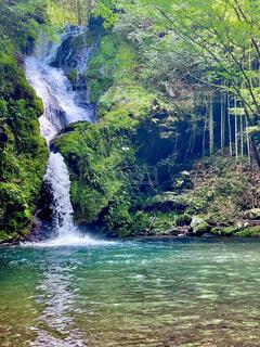 自然,風景,森林,屋外,水面,景色,滝,樹木