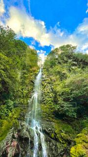 自然,風景,屋外,水面,滝,樹木,草木
