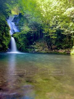 自然,風景,屋外,川,水面,滝,樹木,草木