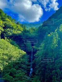 自然,風景,森林,屋外,緑,山,滝,樹木