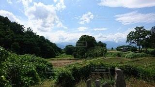 自然,風景,空,屋外,緑,雲,田舎,景色,草,樹木,草木,田園地帯