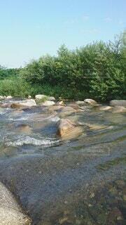 自然,屋外,水,透明,川,水面,水辺,滝,樹木,運河,草木,川面,川底,ストリーム