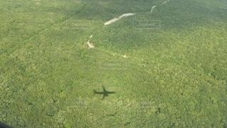 緑の中を走行する飛行機 北海道の景色と影の写真・画像素材[4661581]