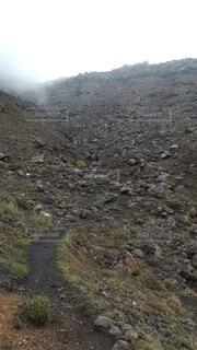 自然,屋外,大地,歩道,獣道,曇,荒廃,登山道,霧の中,進む道