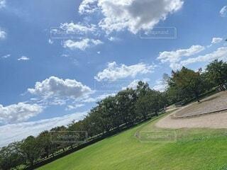 いつもの公園 🎾の写真・画像素材[4664049]
