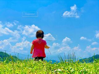 子ども,空,屋外,雲,青い空,景色,草,幼児,草木,日中