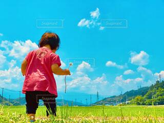 子ども,空,屋外,雲,青い空,景色,草,人物,人,幼児,草木,日中
