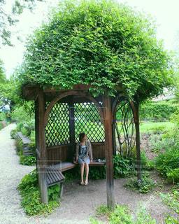 庭のベンチ - No.791253