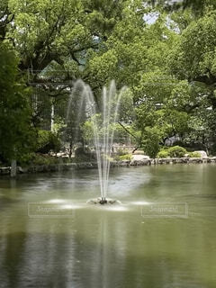 自然,屋外,湖,水面,滝,樹木,草木