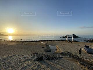 自然,風景,海,空,屋外,ビーチ,雲,水面,海岸,地面