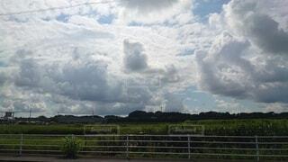 自然,風景,空,夏,屋外,雲,青空,暑い,景色,草,樹木,夏休み,くもり,猛暑,日中