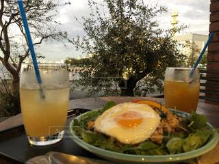 食べ物,夏,屋外,ジュース,夕暮れ,夕方,景色,テーブル,樹木,レモン,カップ,レストラン,カクテル,夏休み,ドリンク,ソフトド リンク,ファジーネーブル,オレンジ ジュース
