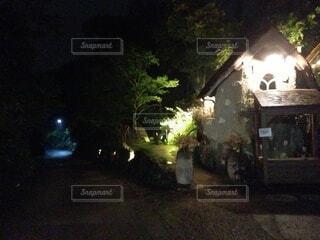 夜,屋外,家,樹木,夜道,洞窟,通り,草木