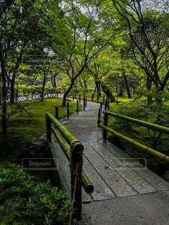 雨の銀閣寺の写真・画像素材[4670173]