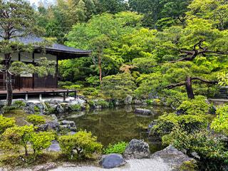雨の銀閣寺の写真・画像素材[4670177]