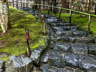 雨の銀閣寺の写真・画像素材[4670182]