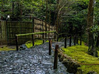 雨の銀閣寺の写真・画像素材[4670179]