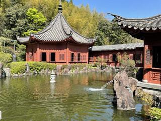 建物,屋外,湖,水面,樹木,仏教