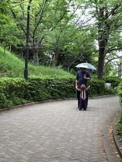 家族,風景,傘,屋外,女の子,樹木,人物,人,リス,地面,梅雨,娘,草木,旦那,パス