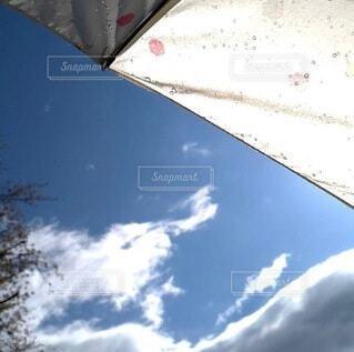 風景,空,木,雨,傘,屋外,雲,きれい,綺麗,青空,水,青い空,景色,爽やか,清々しい,見上げる,雫,あめ,さわやか,天気,しずく,滴,雨粒,上,いい天気,あおぞら,晴れた,てんき,☂️,気分がいい,☂︎*̣̩⋆̩*,☔️,はれた