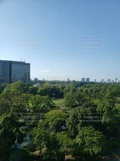 空,公園,建物,屋外,森,雲,タワー,樹木,都会,癒し,高層ビル