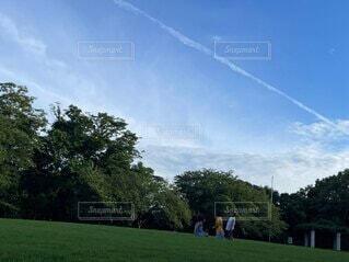 子ども,風景,空,公園,芝生,屋外,雲,青空,景色,子供,人物,人,飛行機雲,ひこうき雲,夏空