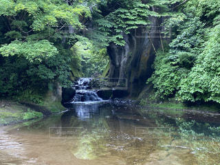 滝の写真・画像素材[4686917]