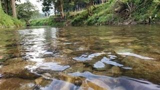自然,風景,屋外,湖,川,水面,水辺,樹木,渓流,清流,運河,水資源,河川地形