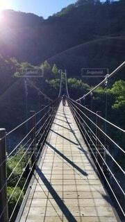 自然,風景,橋,山,樹木,朝,吊り橋
