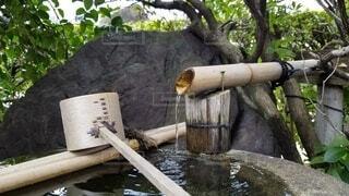 木,屋外,水面,樹木,日本庭園,和,木目,草木,水場,和の風景