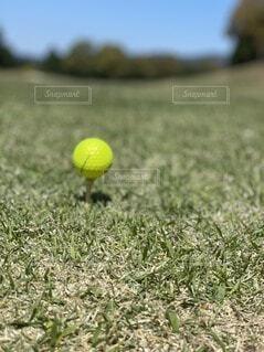 空,屋外,景色,草,ボール,サッカー,ゴルフ,テニス,テニスボール,ゴルフボール,スポーツ用品