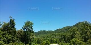 自然,風景,空,森林,屋外,雲,山,景色,樹木,新緑,高原,草木,山腹