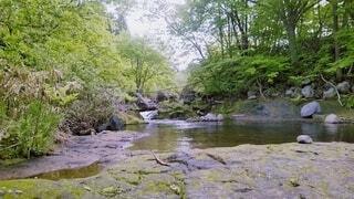 屋外,湖,川,水面,水辺,樹木,岩,運河,銀行,クリーク,水辺の森,ストリーム,水資源,アロヨ,河川地形