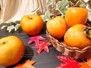 柿と梨の写真・画像素材[4873093]