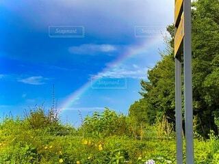 虹の写真・画像素材[4688837]