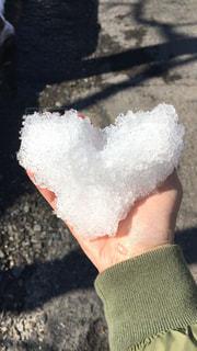 雪遊び♡ - No.768946