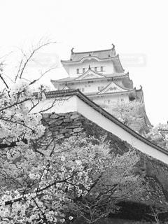 姫路城!の写真・画像素材[1122049]