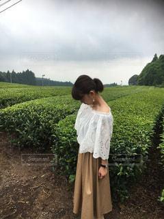 草の中に立っている少女の写真・画像素材[1329474]