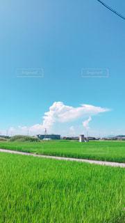 ある日の青空!の写真・画像素材[1339244]