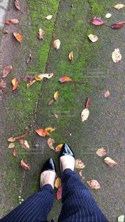 芝生の上の靴のグループの写真・画像素材[1812455]