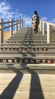 階段を上がるわ私です!の写真・画像素材[2702473]