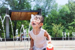 暑い夏はコレでしょぉぉぉぉ!の写真・画像素材[4701815]