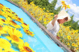 向日葵少女の夏休みの写真・画像素材[4746691]