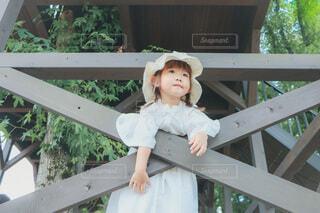 森の小さな妖精の写真・画像素材[4772822]