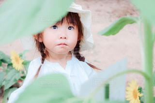 隙間からちいさな少女の写真・画像素材[4772836]