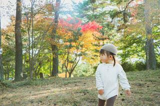 秋の日のおさんぽタイムの写真・画像素材[4812895]
